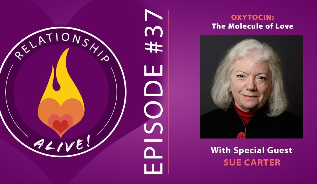 37: Oxytocin: the Molecule of Love with Sue Carter